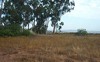 Photo of Open Space