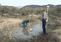 Photo of Workers at Vernal Pool