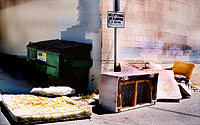 Photo of No Dumping Sign, Dumpster, Mattress, and Couch