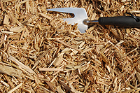Photo of Plain Wood Chips