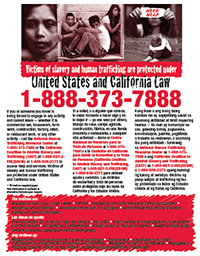 Graphic of Human Trafficking Flyer