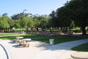 Photo of Pepper Grove, 3 of 4