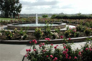 Photo of the Rose Garden, 1 of 4