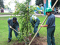 Photo of Urban Corps at work