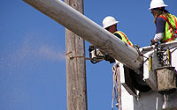 Photo of Pole Removal