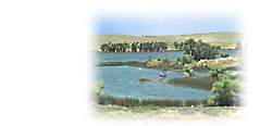 Photo of Upper Otay Reservoir