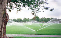Photo of Lawn Sprinklers