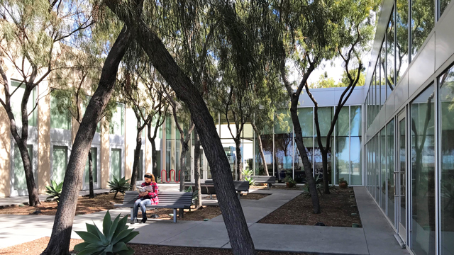 Patio at the Otay Mesa-Nestor Library