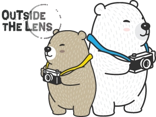 Graphic of two bears with cameras