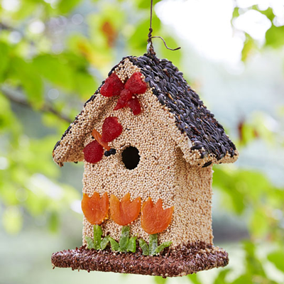 Image of a birdhouse made out of seeds