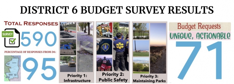 D6 Budget Survey Results 2021