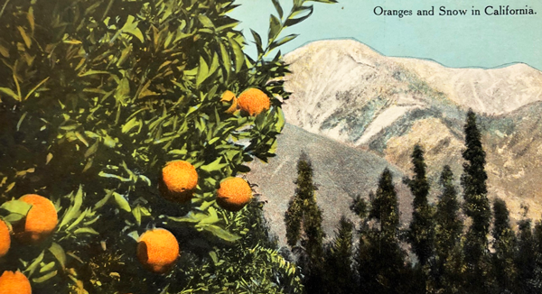 Postcard image of oranges and snow peak mountains