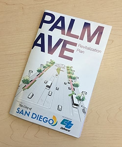 Photo of Palm Avenue Brochure