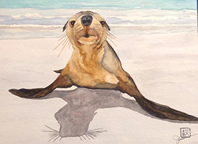 Seal waterpainting by Jeanne Ames