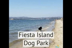 #FindYourHappySpace San Diego Dog Parks