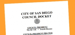 Image of council docket