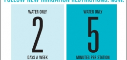 Graphic of When to Water Chart