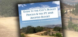 Guide to the City's Budget Process cover page