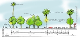 Illustration of streetscape with trees