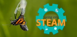 Spring into STEAM banner