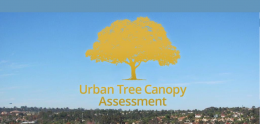 Urban Canopy Story Map
