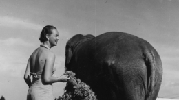 1935-36 California Pacific Exposition, Gretta Grant with Elephant
