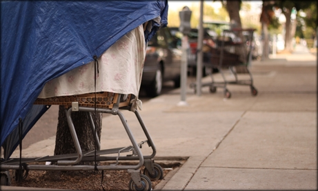 Photo of tarp covered shopping cart