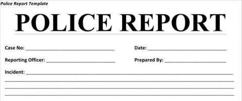 official report document